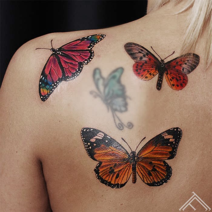 Martins_tattoo_tattoofrequency_butterfly_riga_art