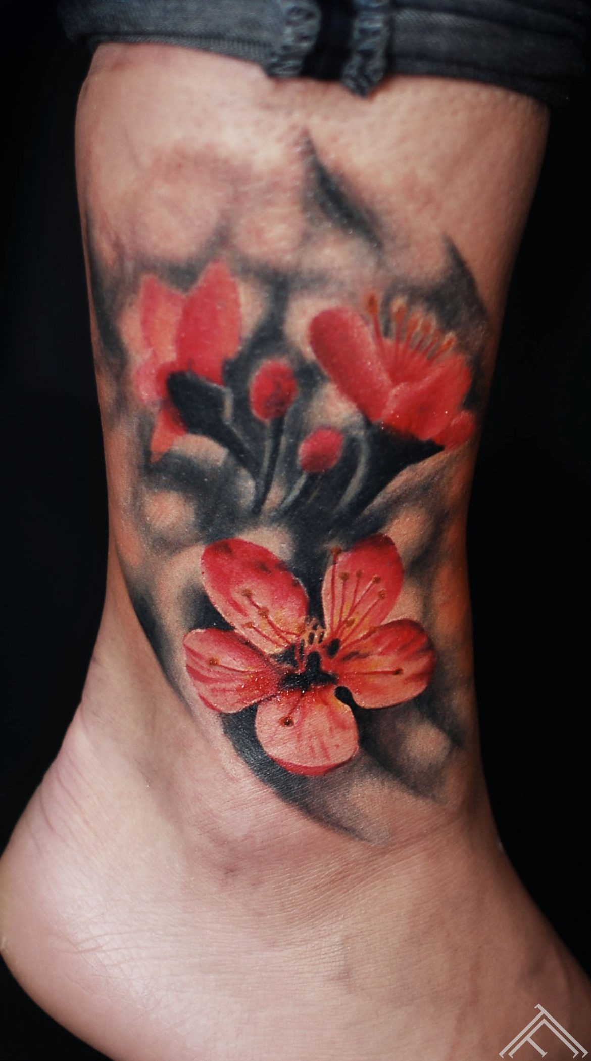 andersons_tattoo_flower_cherryblosom_tattoofrequency