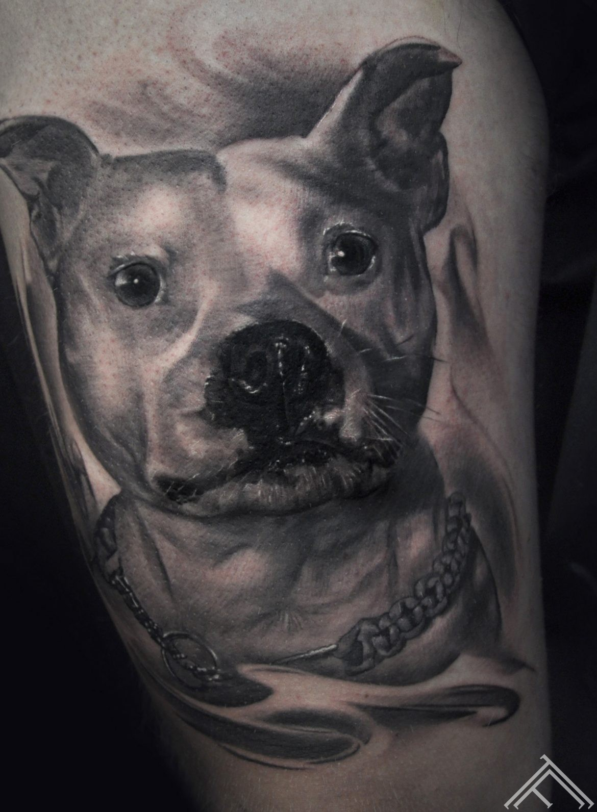 dog-tattoo-marispavlo-tattoofrequency-normalsize