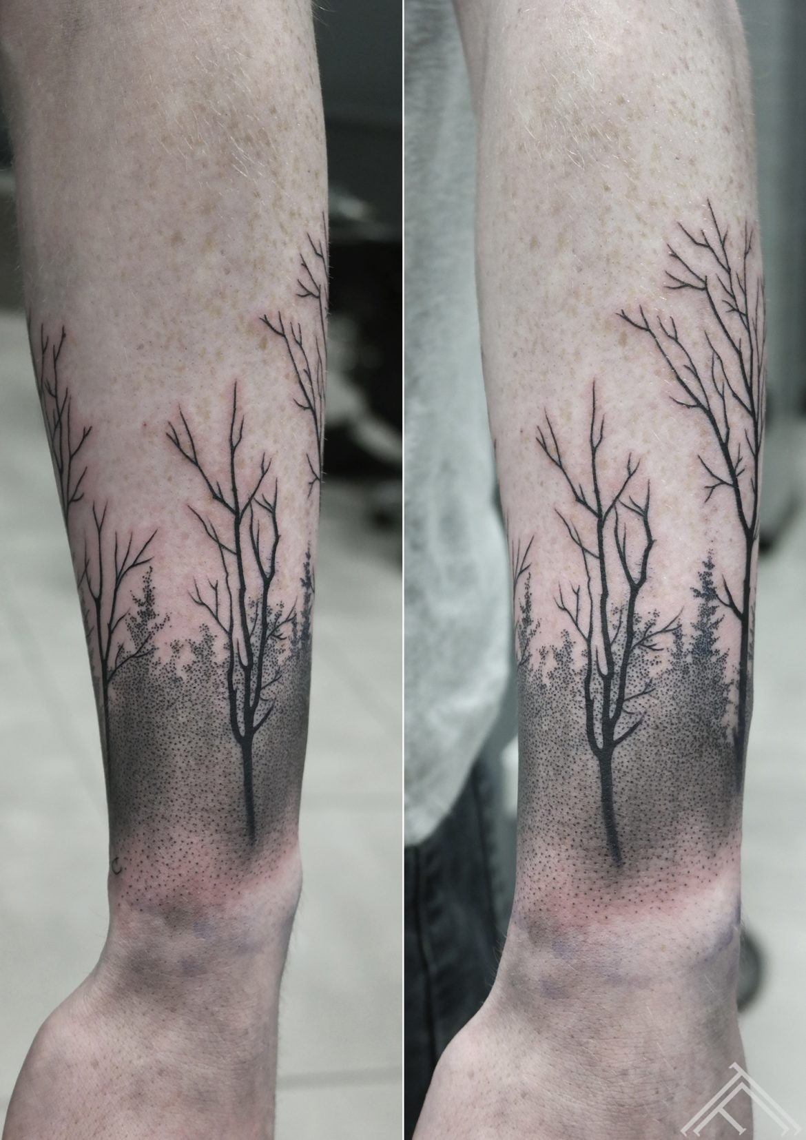 dotwork-trees-koki-mezs-tetovejums-tattoo-riga-janissvars-tattoofrequency