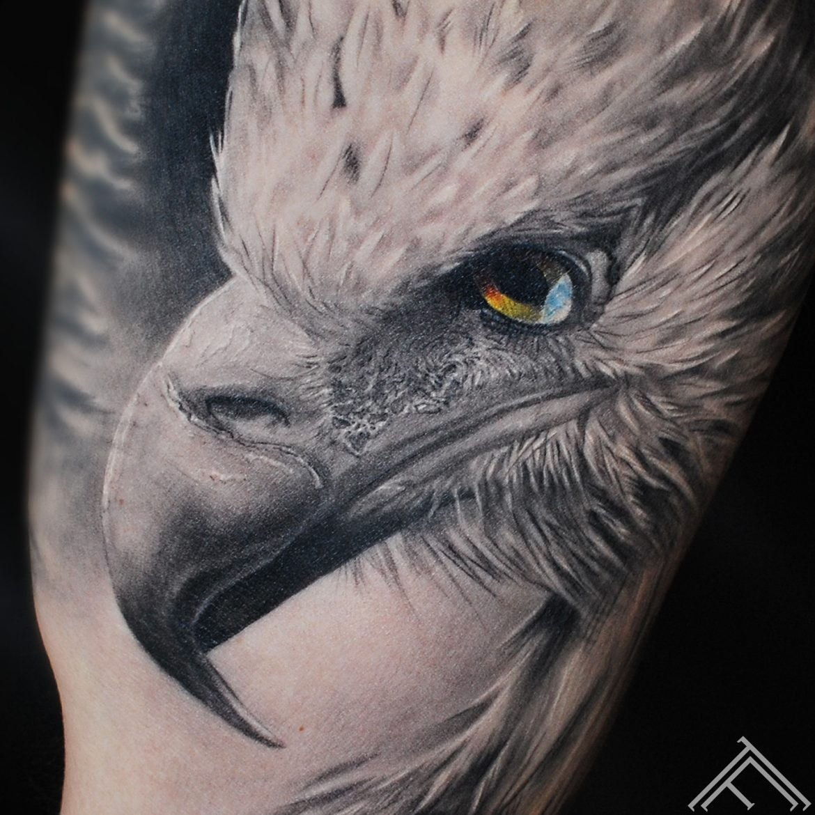 eagle-bird-erglis-putns-tattoo-tetovejums-detailshot_tattoofrequency-riga-instagram