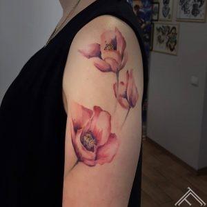 magones-abstract-sketch-watercolor-tattoo-tetovejums-krasains-skice-udenskrasa-riga-tattoofrequency-johnlogan