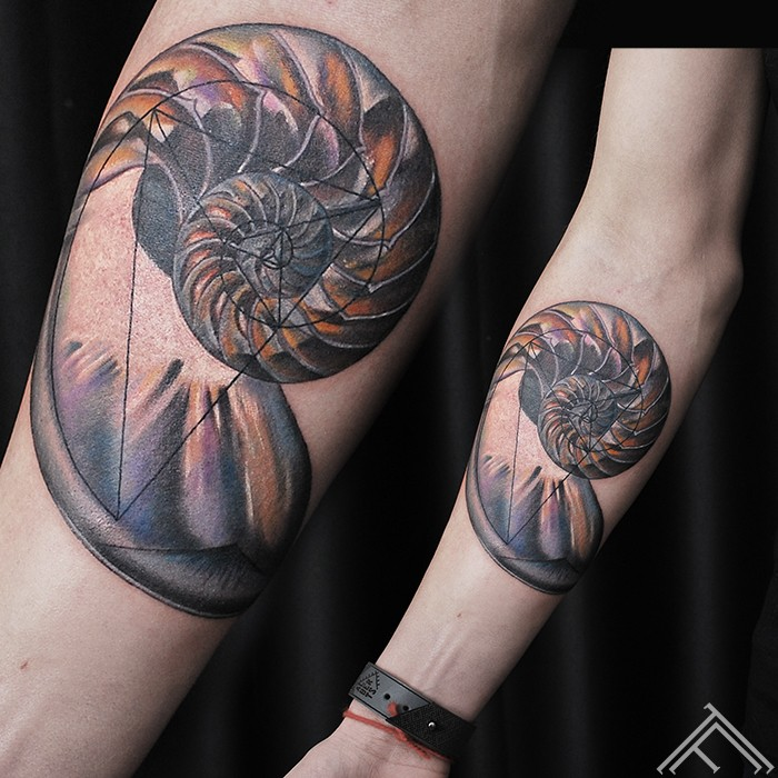 nautilus shell-tattoo-tetovejums-tattoofrequency-studija-salons-riga-art-martinssilins-maksla