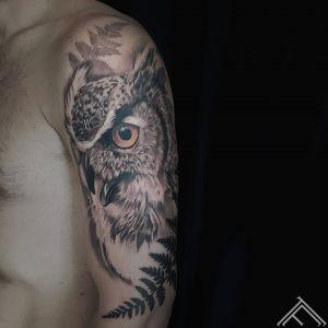 owl-puce-tetovejumas-art-tattoo-tattoofrequency-riga
