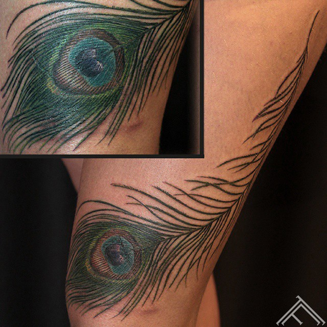 peacock-pavs-spalva-feather-tattoo-tetovejums-tattoofrequency-studija-salons-riga-art-martinssilins-maksla