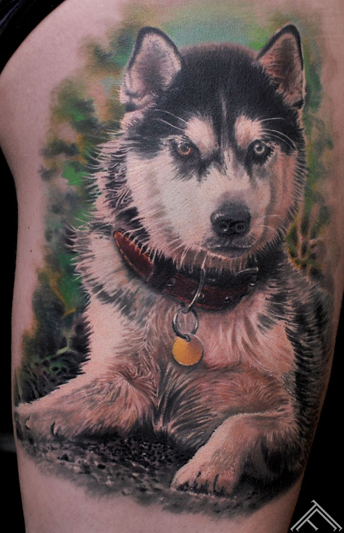 tattoo-marispavlo-tattoofrequency-dog-haskey