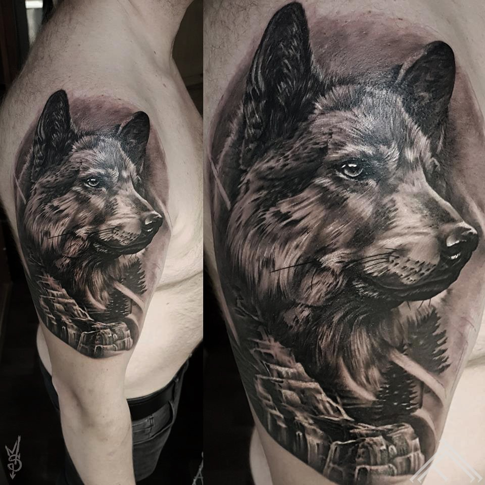 wolf-viks-suns-dog-tetovejums-riga-sporta2-tattoofrequency-martinssilins