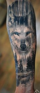 wolf-wood-forest-sprunce-pine-animal-marispavlo-tattoofrequency-riga