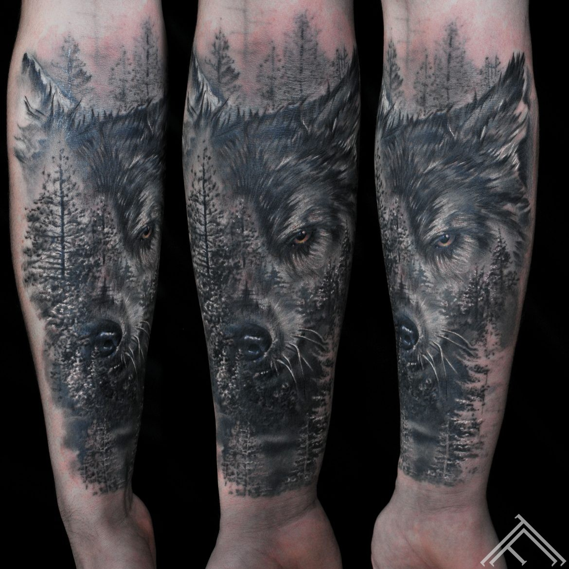 wolf_forest_spruce_marispavlo_tattoo_tattoofrequency_riga
