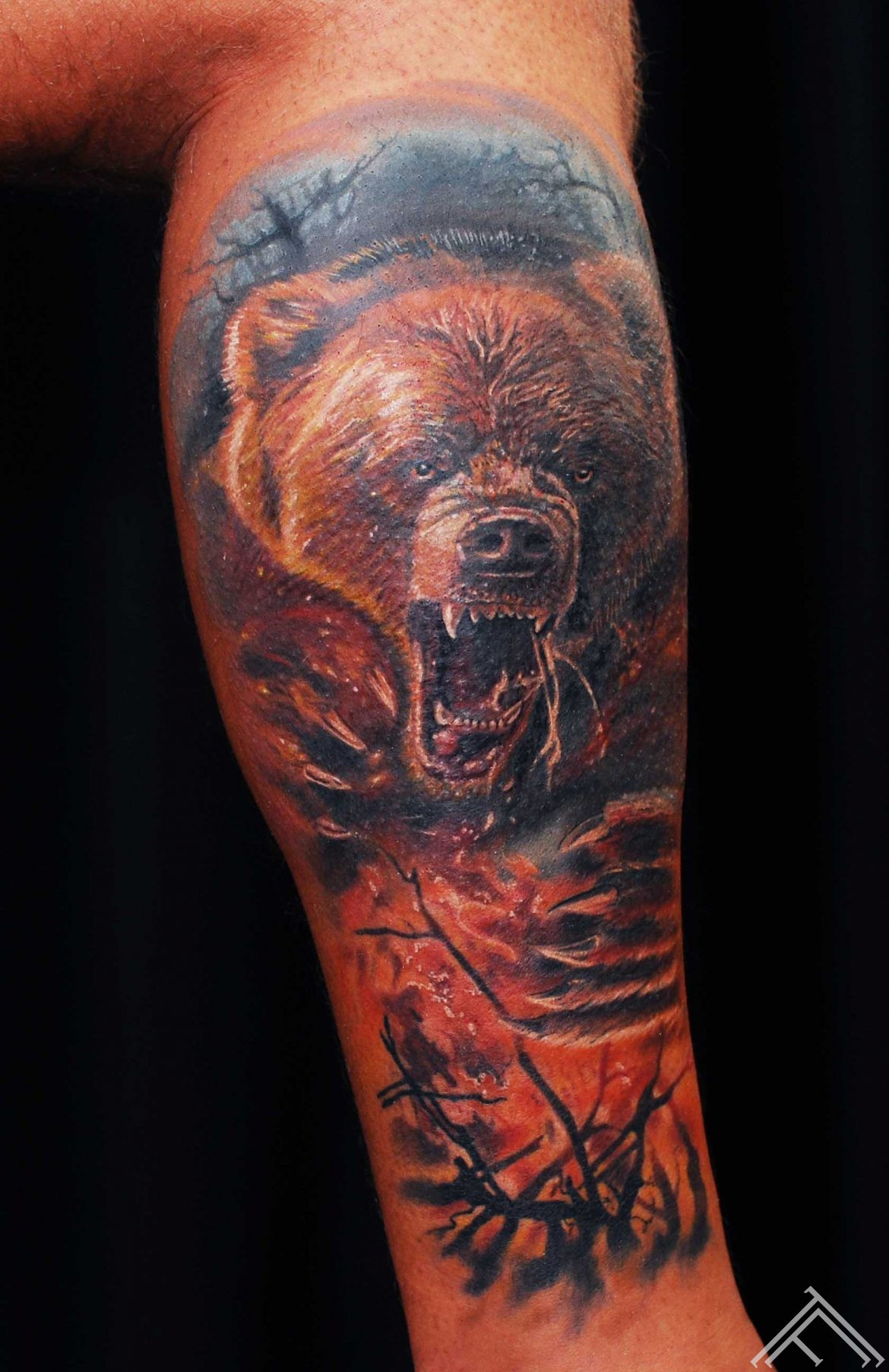 bear_fire_tattoo_tattoofrequency_tattoo