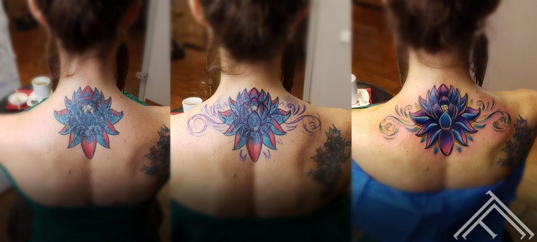 lotus-coverup-process-AWEN