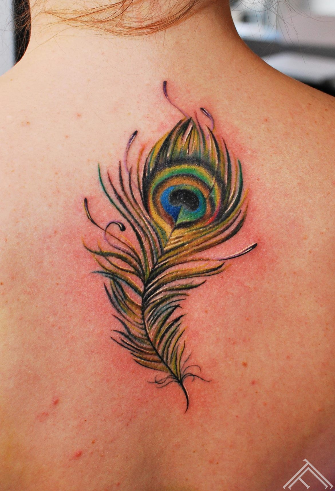 maris pavlo_tattoo_tattoofrequency