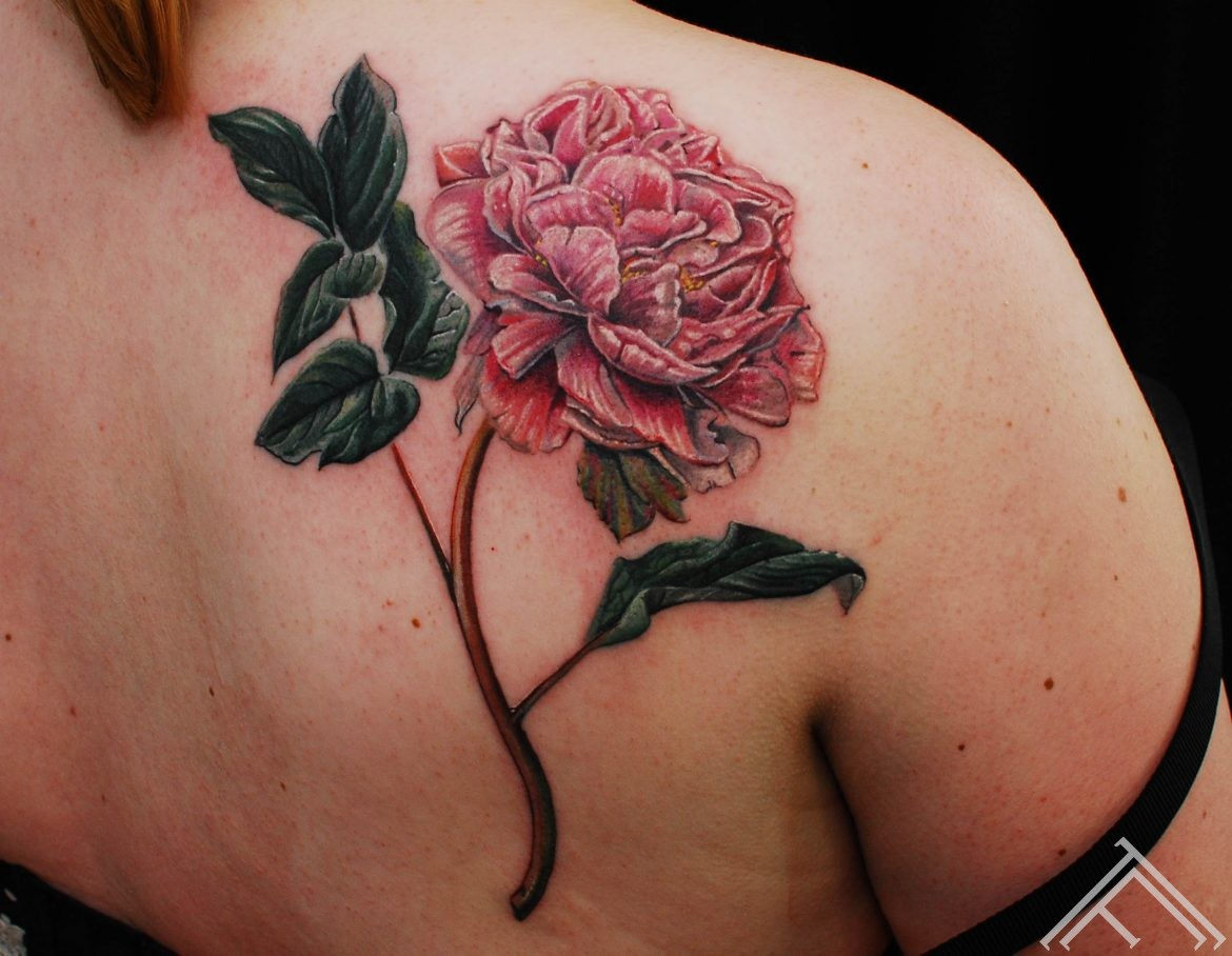 peony_flower_tattoo_tattoofrequency_marispavlo_riga