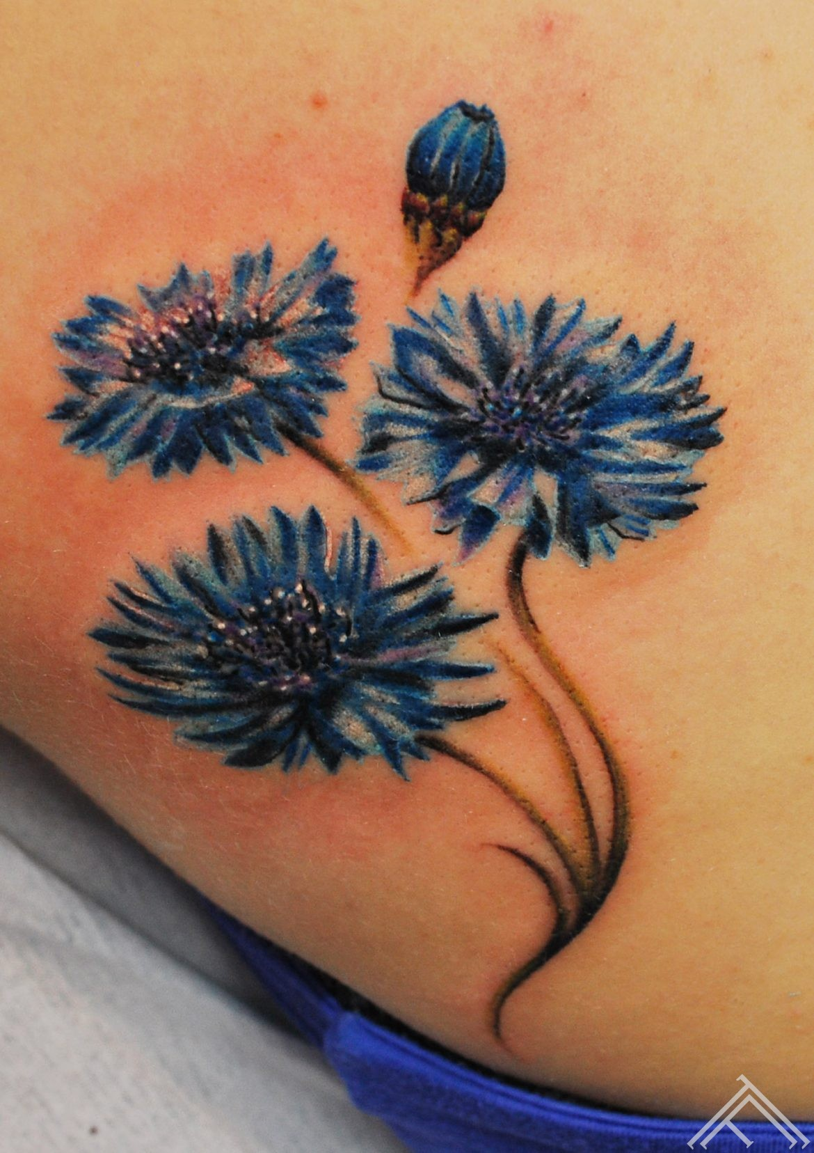 tattoo_cornflower_flower_blue_rigatattoo_studio_tattoofrequency