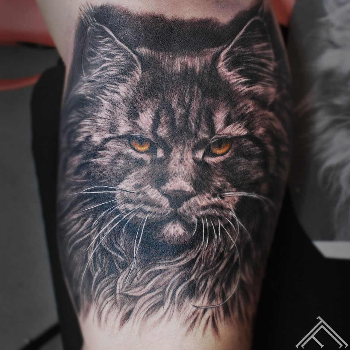 lynx-cat-lusis-kakis-tetovejums-tattoo-tattoofrequency-riga