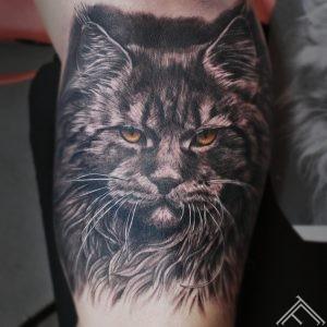 lynx-cat-lusis-kakis-tetovejums-tattoo-tattoofrequency-riga