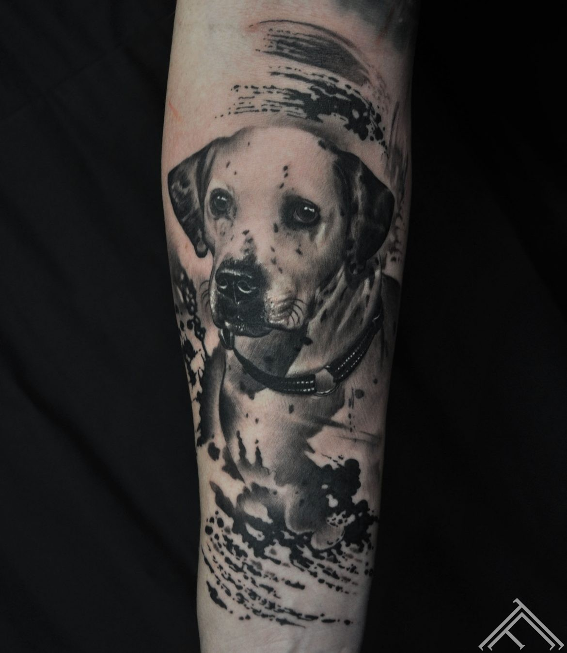 dog-tattoo-suns-tetovejums-marispavlo-art-maksla-tattoofrequency