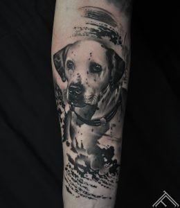 dog-tattoo-suns-tetovejums-marispavlo-art-maksla-tattoofrequency