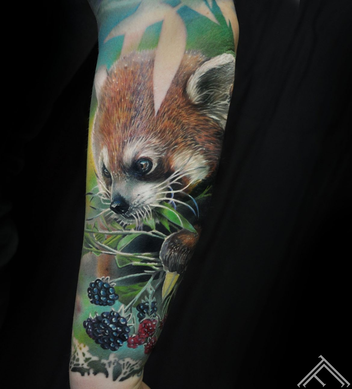 redpanda-panda-berries-ogas-tetovejums-tattoo-tattoofrequency-riga-art-marispavlo