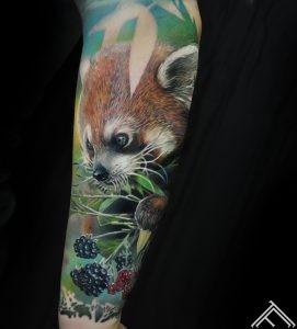 redpanda-panda-berries-ogas-tetovejums-tattoo-tattoofrequency-riga-art-marispavlo