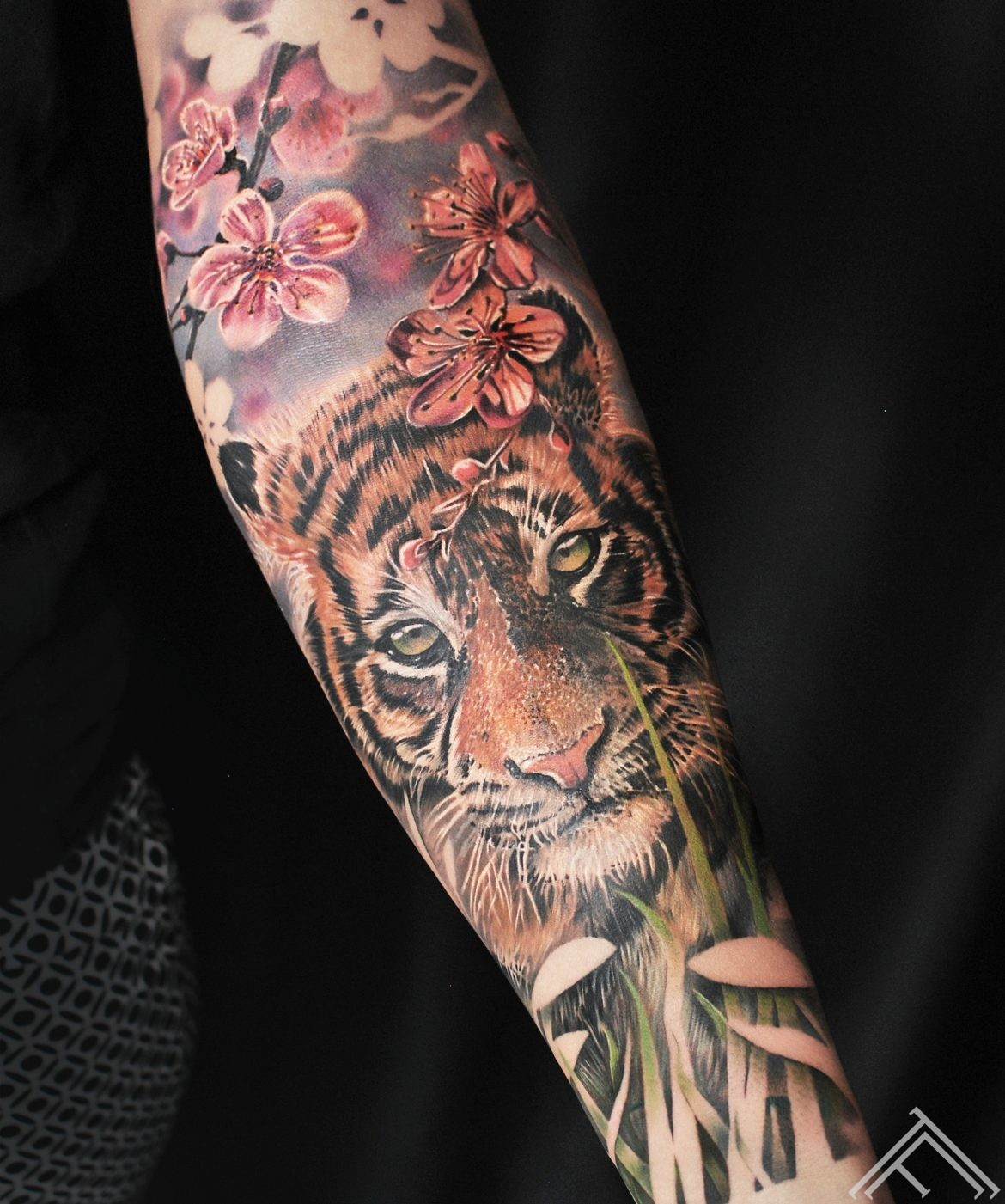 tiger-cat-tigeris-kakis-ziedi-flowers-cherryblossom-tattoofrequency-riga-art-marispavlo