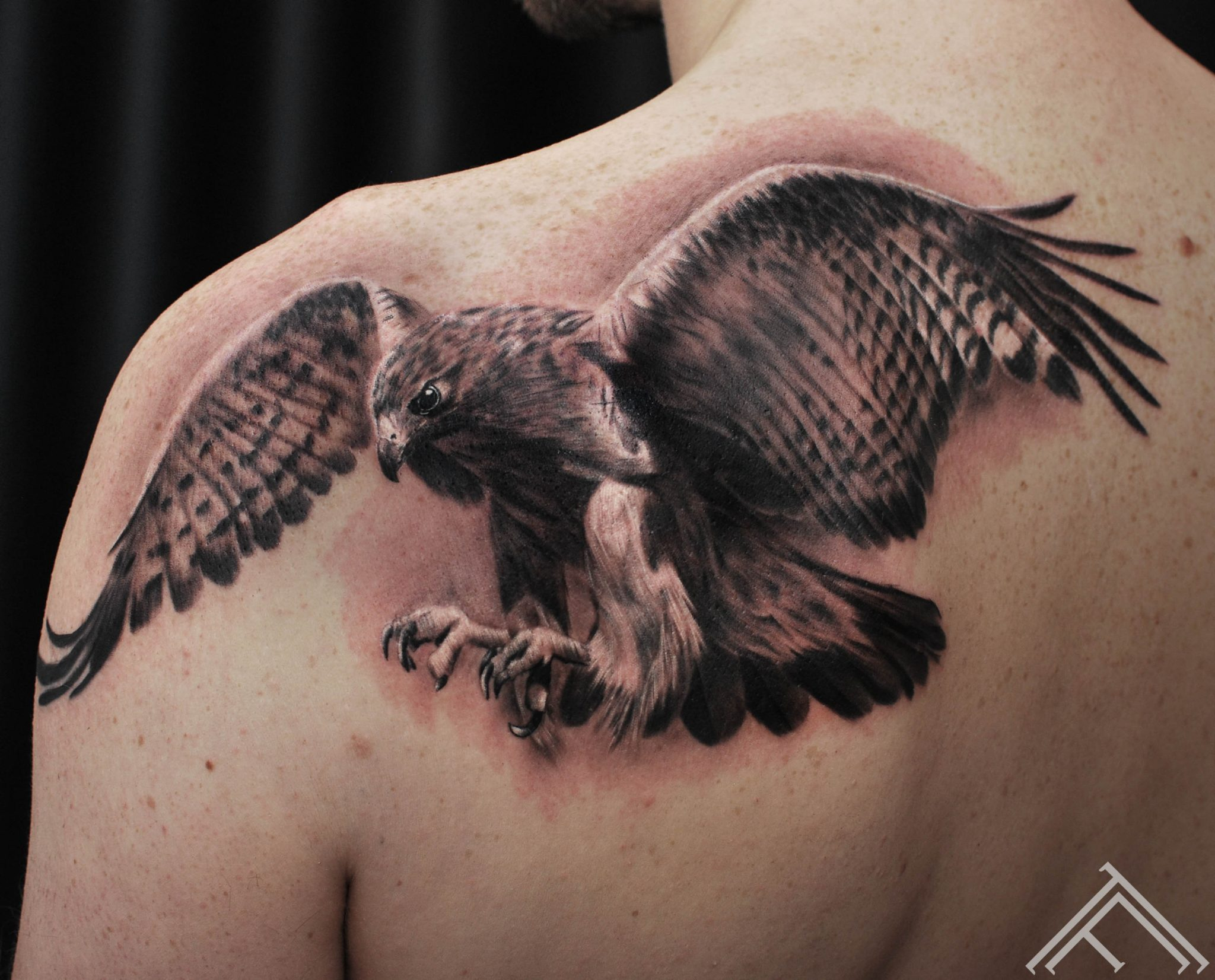 eagle-tattoo-tattoofrequency-bird-putns-janisanderson-riga