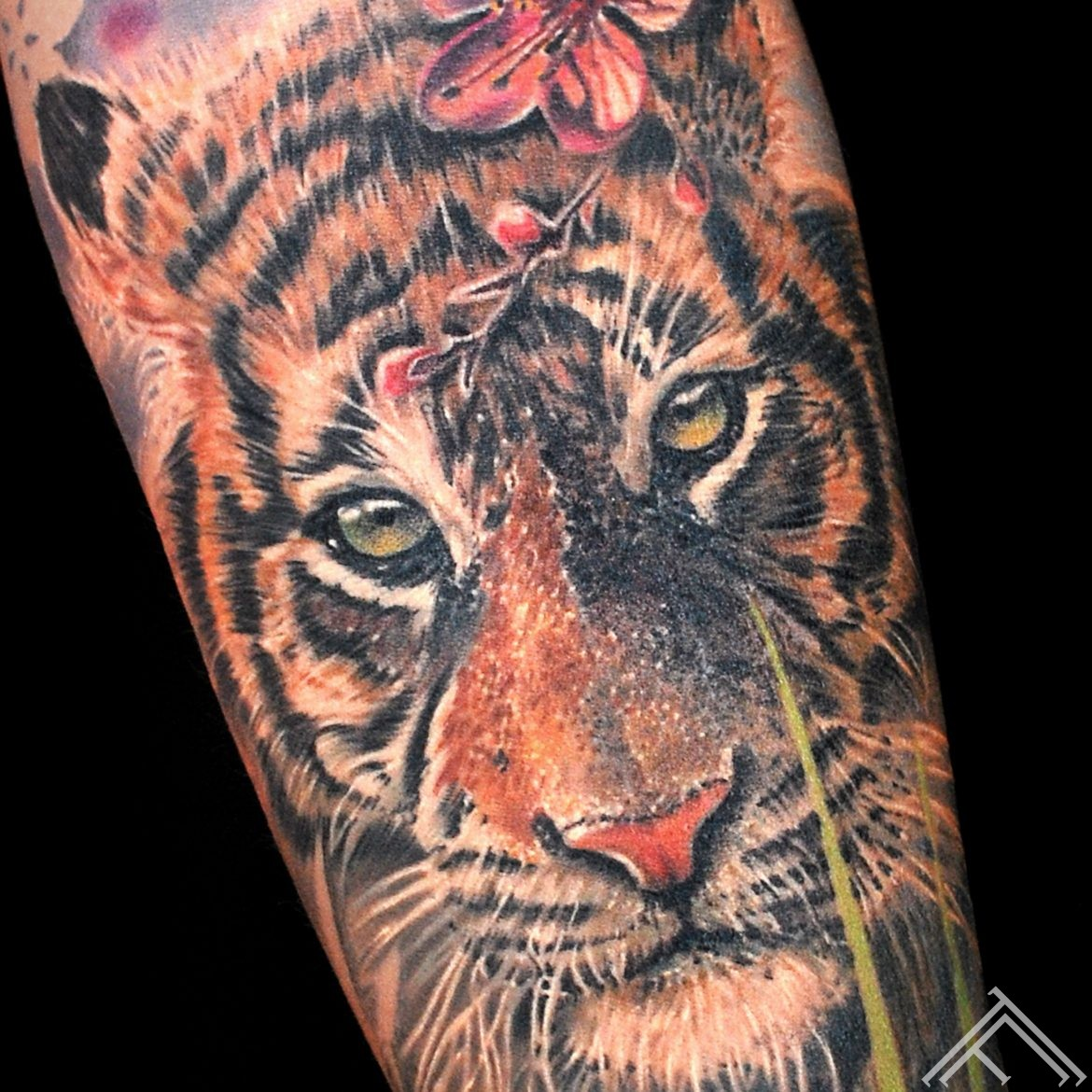 tiger-closeup-tattoo-tattoofrequency-riga-marispavlo