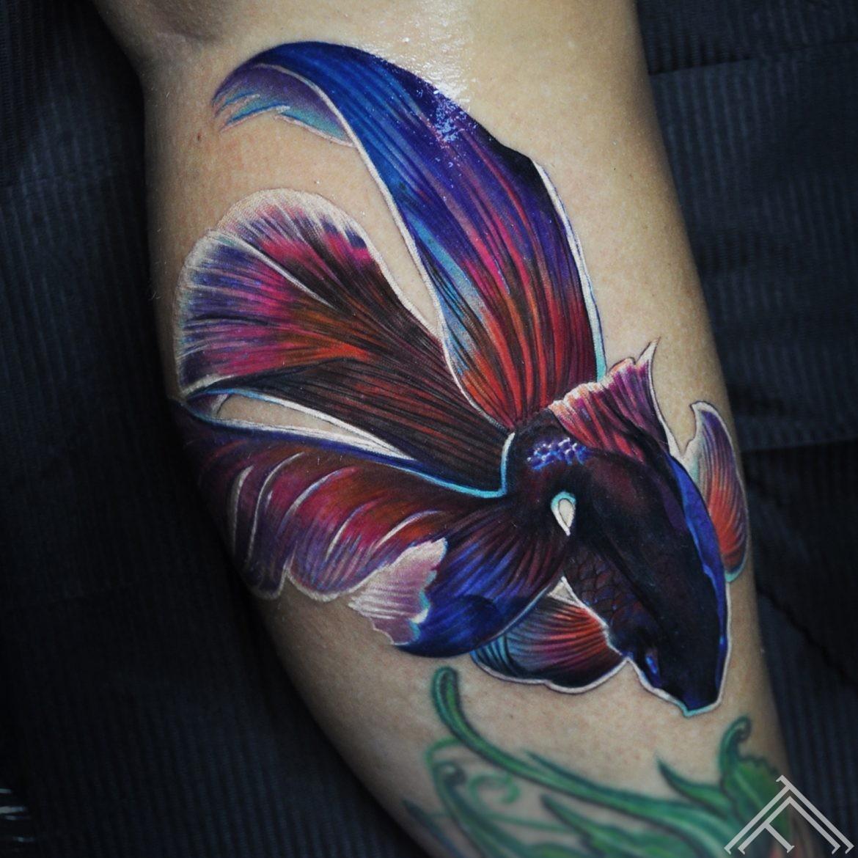 siamese-fighting- fish-zivs-tattoo-tattoofrequency