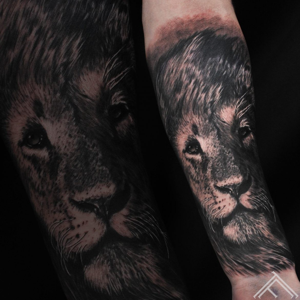 lion-lauva-tetovejums-tattoo-tattoofequency-riga-art-andersontattoo