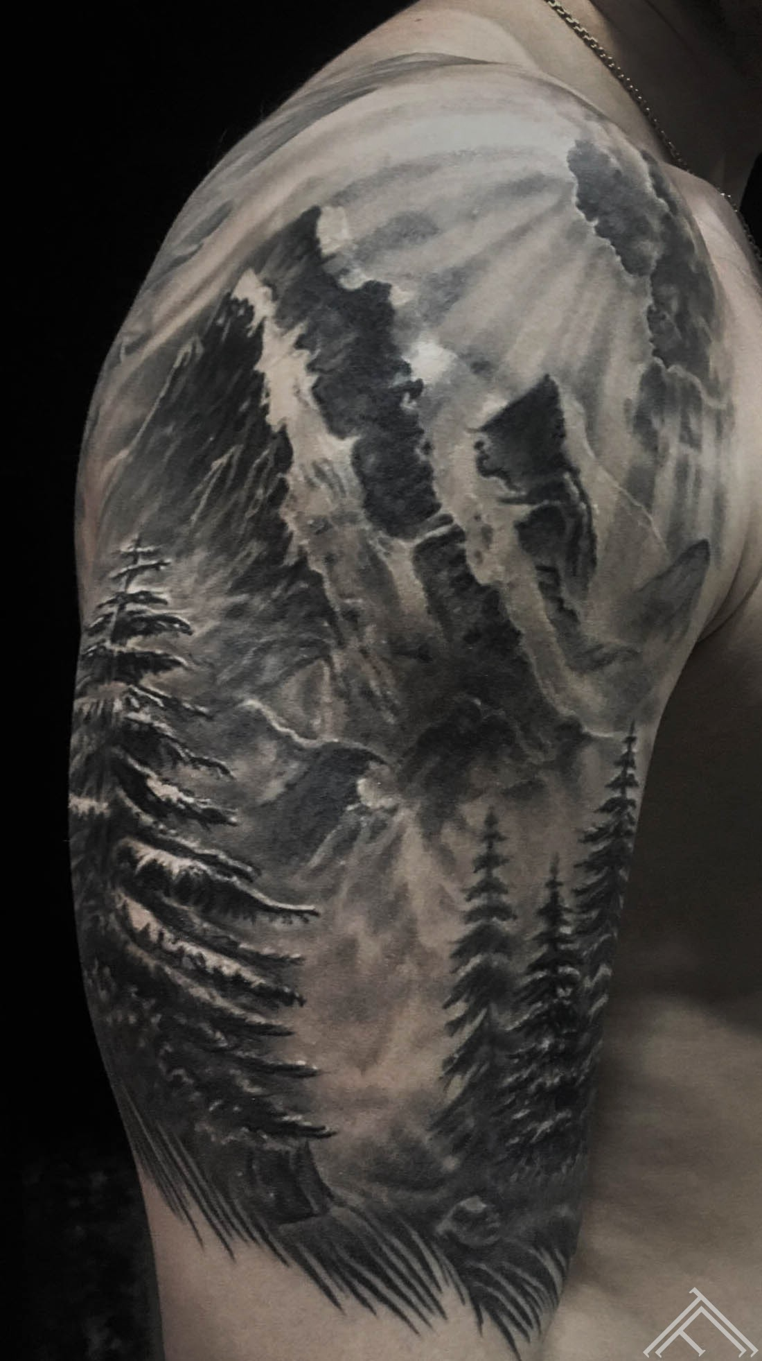 pine-egles-forest-mountains-marispavlo-art-tattoofrequency-riga