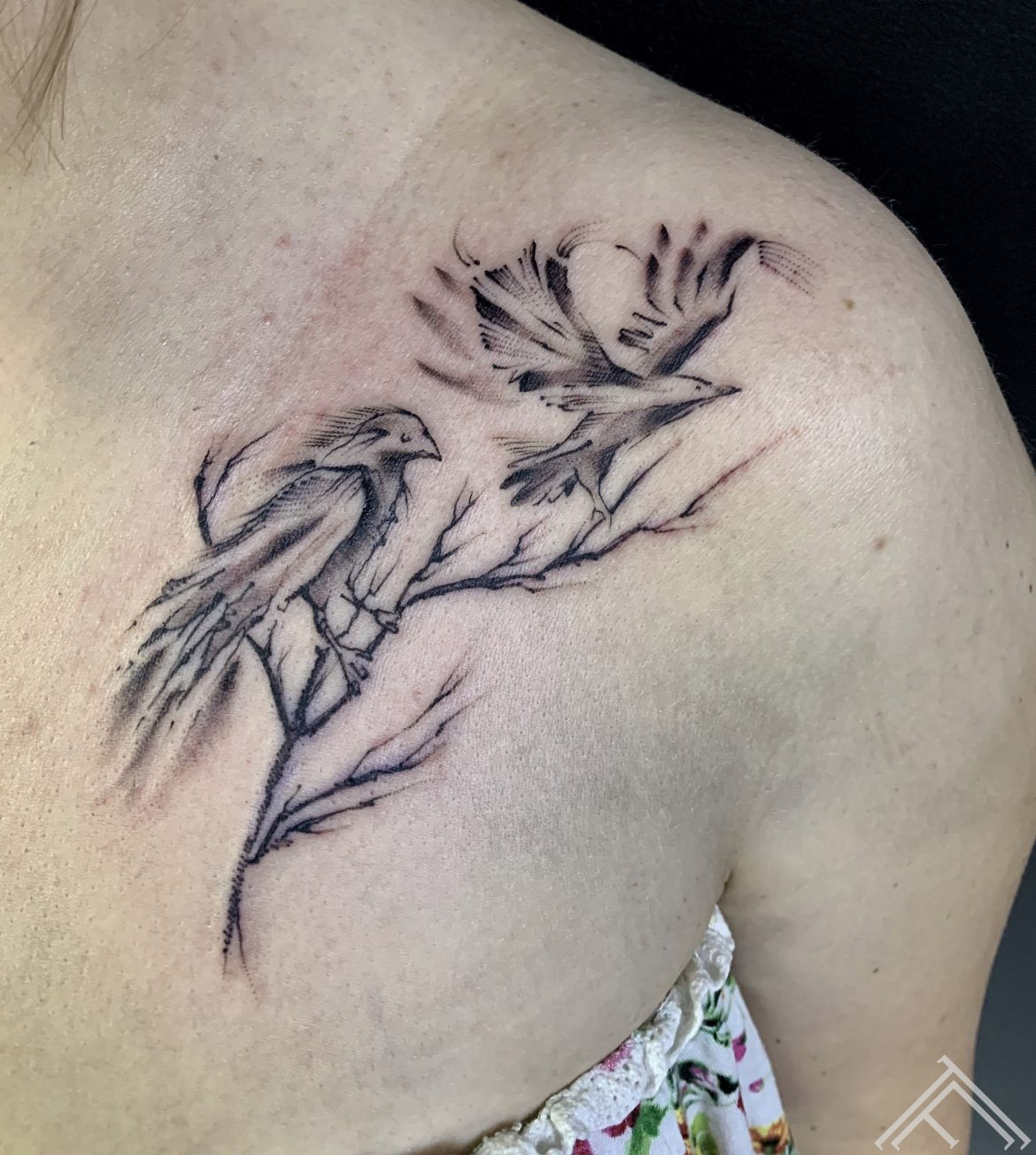 birds-graphic-tattoofrequencyriga-dmitryrazin