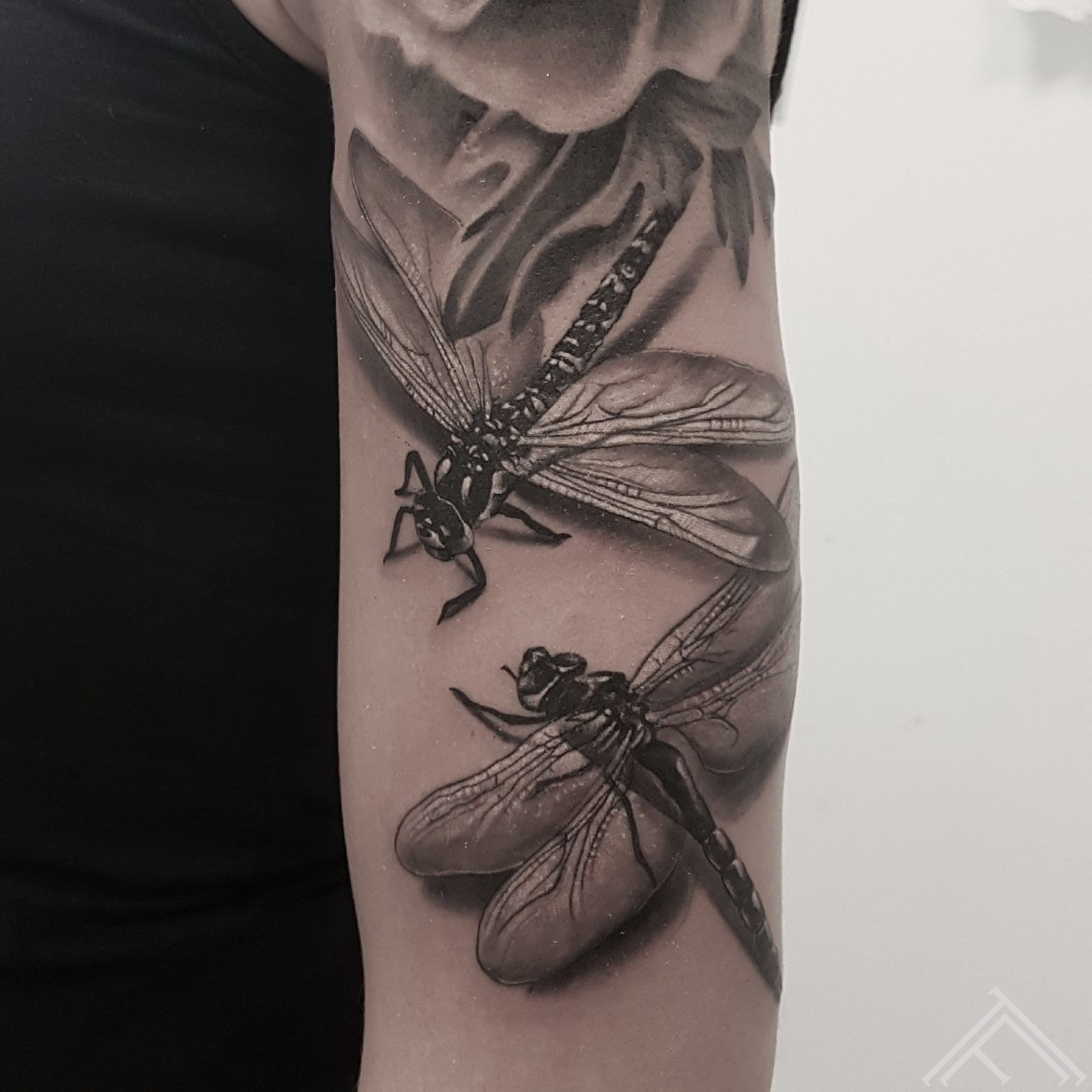 dragonfly-tattoo-martinssilins-tattoofrequency-riga