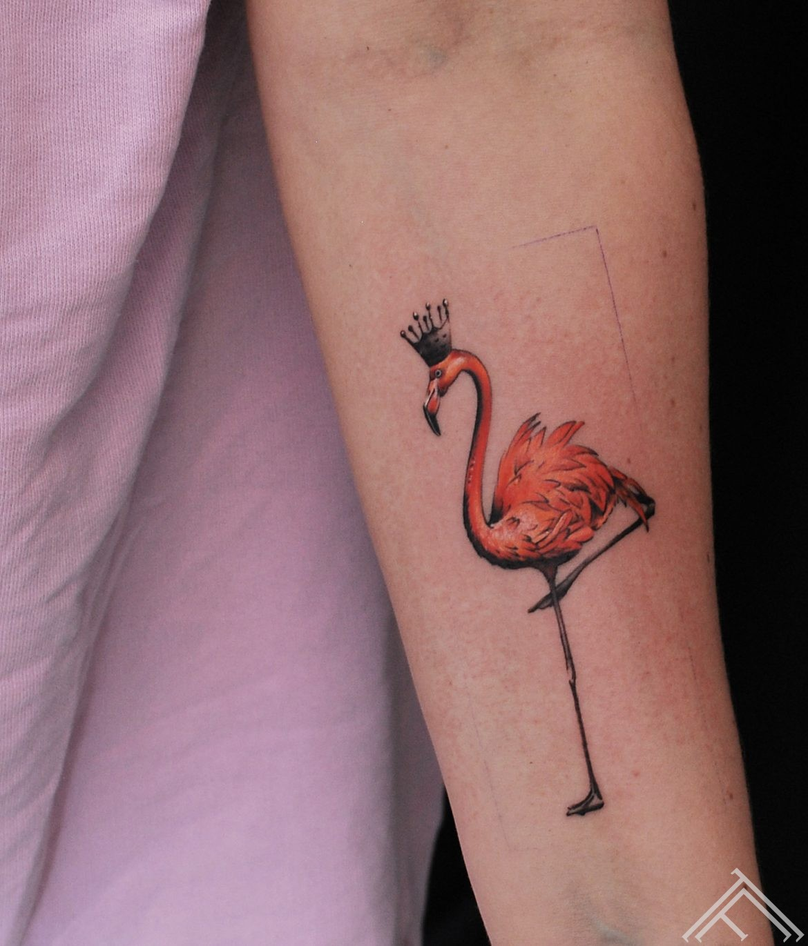 flamingo-martinssilins-tattoofrequency-riga