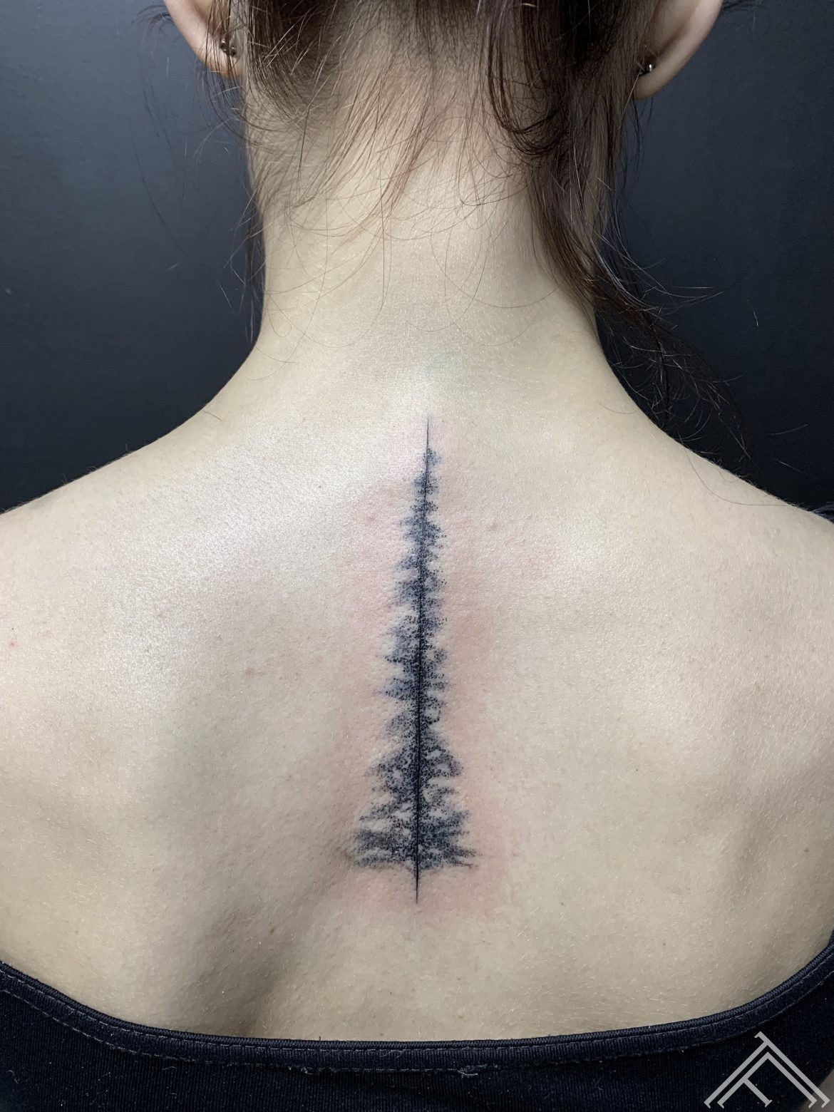 pine-tree-minimaltattoo-tattoofrequency-dmitrijsrazins