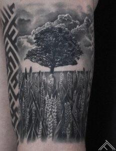 varpas-koks-tree-graas-plant-horizont-plava-landscape-makoni-clouds-art-tattoofrequency-martinssilinstattoo-close up